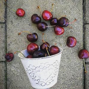 More cherries 🍒